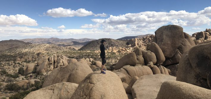 DC widow Marjorie Brimley at Joshua Tree National Park looking into the distance