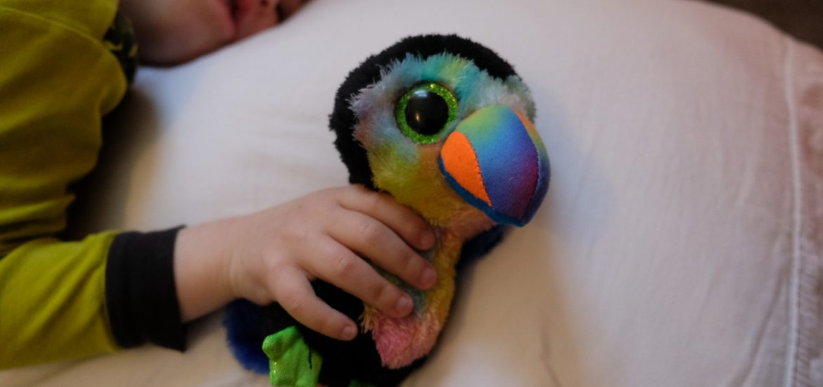 DC widow blog writer Marjorie Brimley's baby holds a stuffed parrot