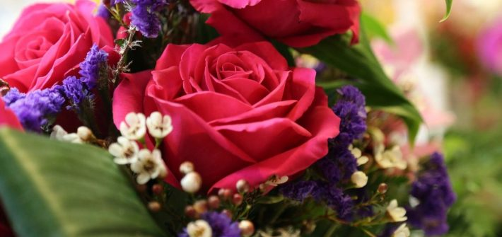 Red roses like those of DC widow blog writer Marjorie Brimley