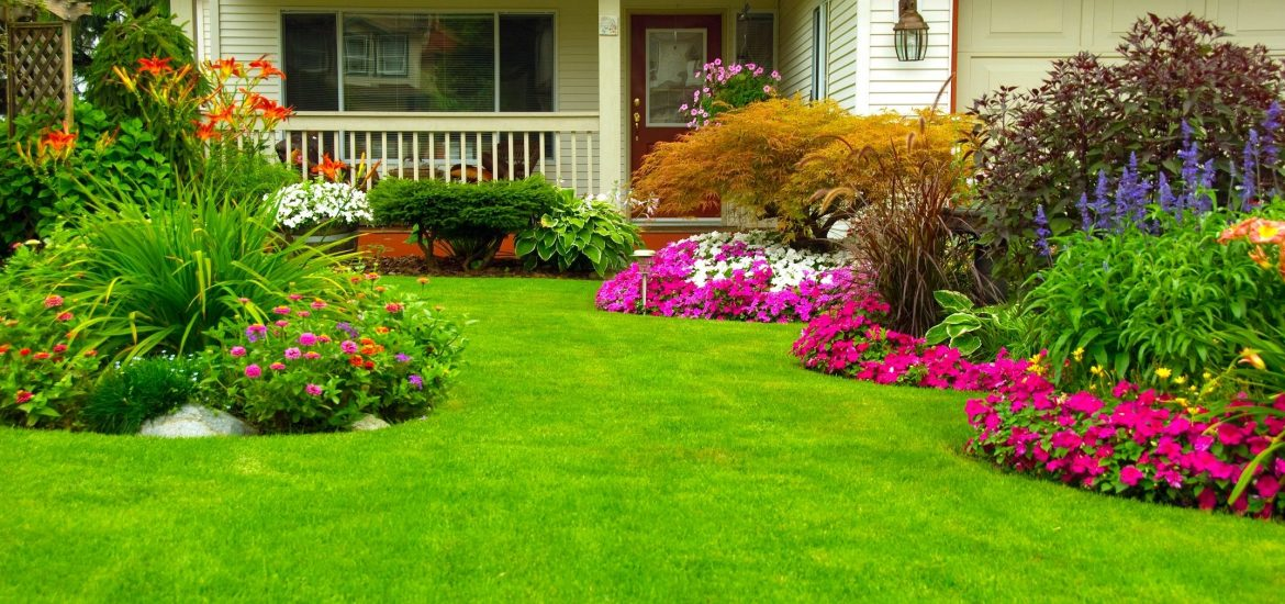 Manicured lawn similar to that at party attended by DC widow blog writer Marjorie Brimley