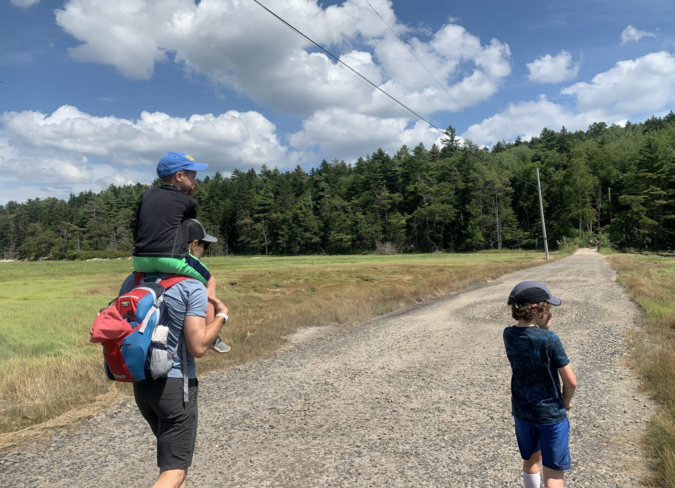 Partner and sons of DC widow blog writer Marjorie Brimley walk in a field