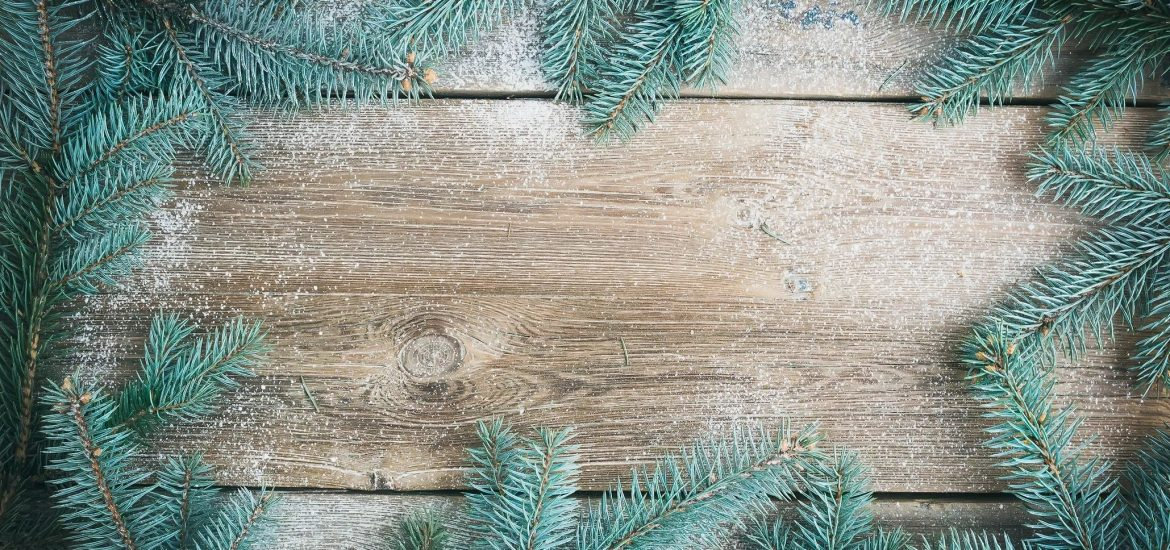 Tree branches on wood for blog by DC widow writer Marjorie Brimley