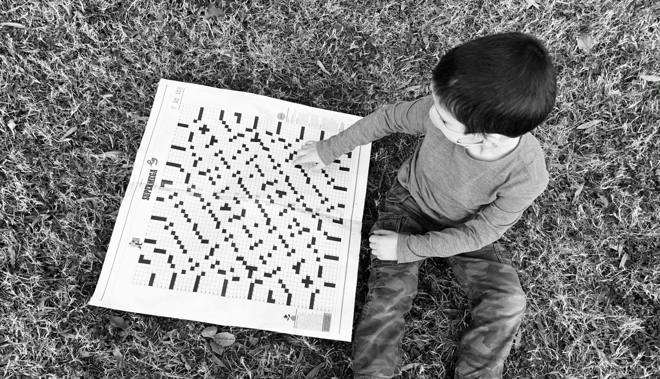 Son of DC widow blog writer Marjorie Brimley looks at crossword puzzle